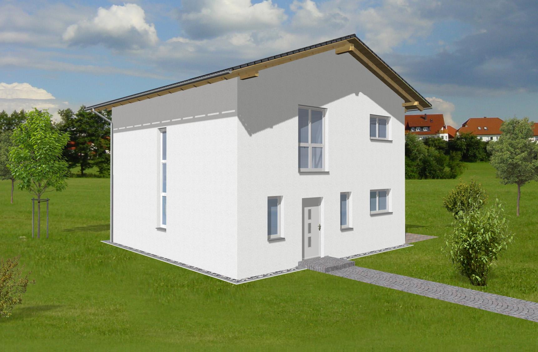 Typenhaus Castor - ALG Massivhaus GmbH Eingangsansicht