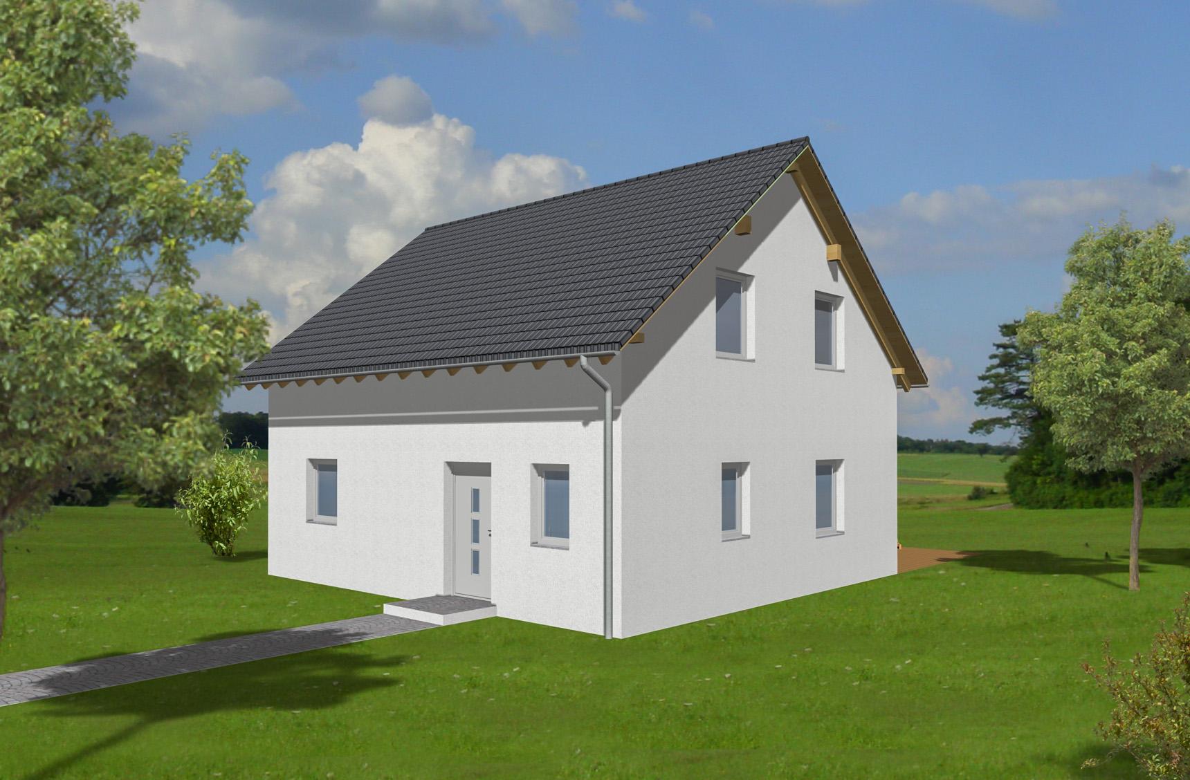 Typenhaus Cursa - ALG Massivhaus GmbH Eingangsansicht