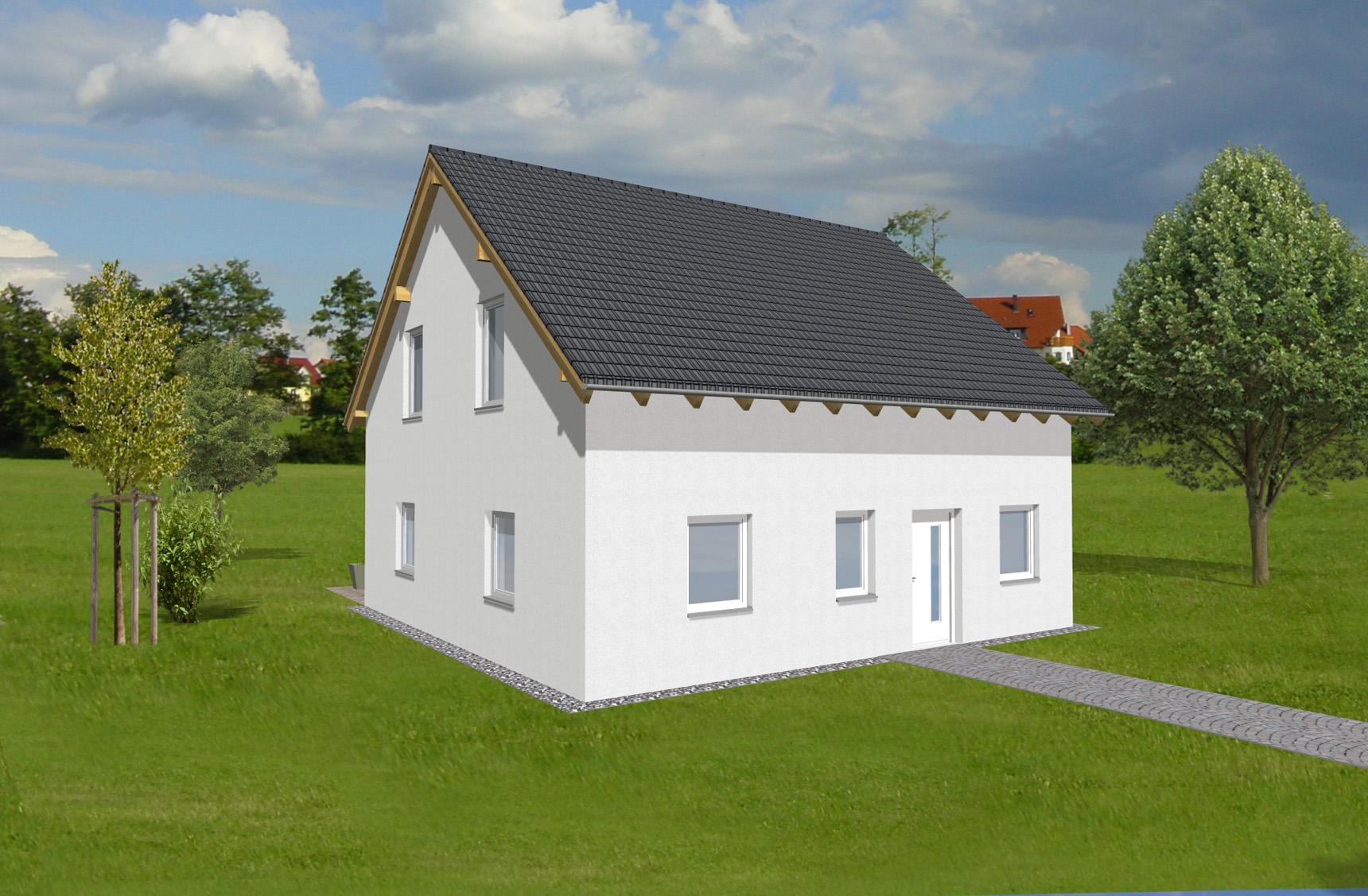 Typenhaus Mira - ALG Massivhaus GmbH Eingangsansicht