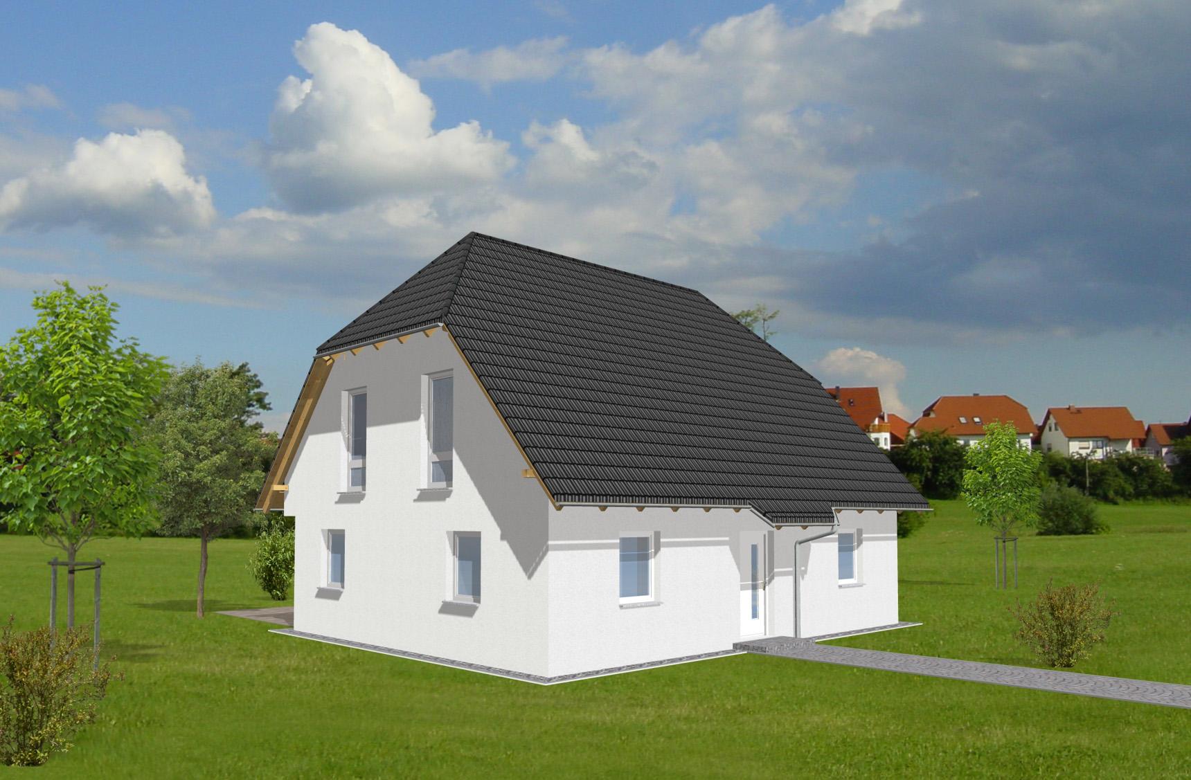 Typenhaus Minelava - ALG Massivhaus GmbH Eingangsansicht