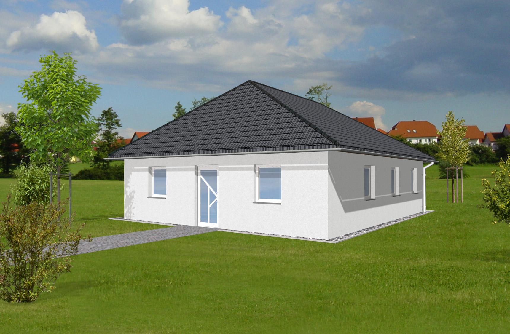 Typenhaus Rigel - ALG Massivhaus GmbH Eingangsansicht